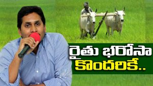 jagan government Shocking decision on raithu bharosa decision to give only sc st bc farmers